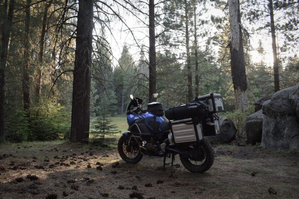 camping sauvage ou dispersed camping dans la forêt de sequoia