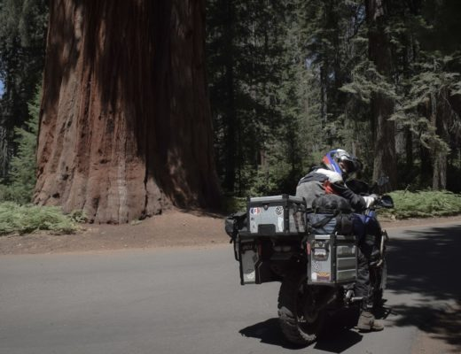 on vous embarque dans le parc national de sequoia
